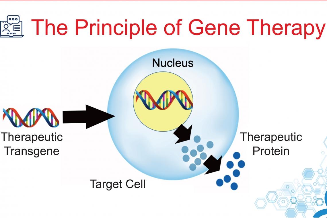 जीन थेरेपी जानने के लिए: शब्दावली और अवधारणाओं